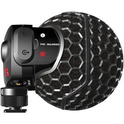 Camcorder Microphones